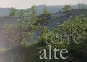 AVSR 2013 The Story new