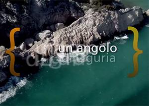 Bergeggi Island Marine Reserve new