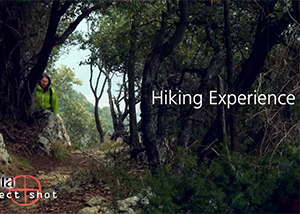 Hiking Experience new