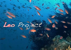 Leo Project begins new